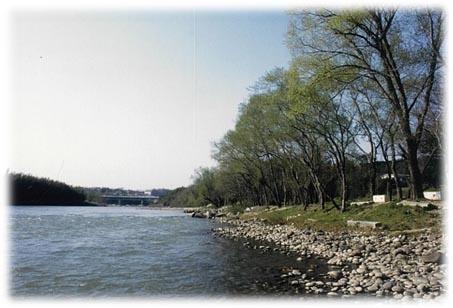 川 釣り 矢作 バス